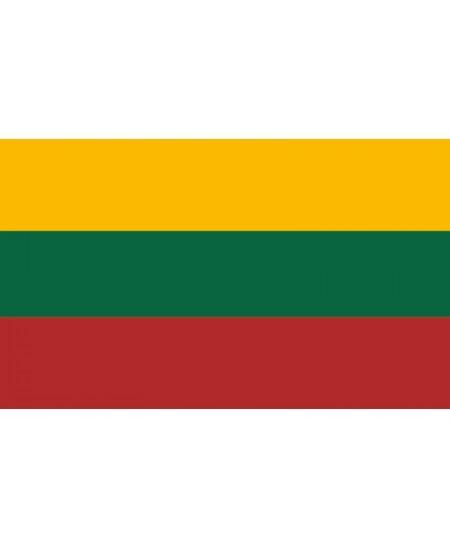 Šilkografinė Lietuvos vėliava 170x100cm, su karabinais, tvirtinimui ant stiebo