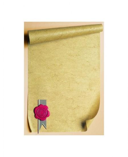 Diplominis popierius GALERIA PAPIERU 211817, 250 g/m2, A4, 20 lapų