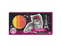 Plastilinas PATIO 12 spalvų