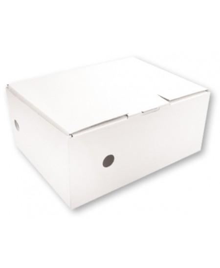 Archyvinė dėžė SM-LT, 100x345x270 mm, mikrogofro, balta