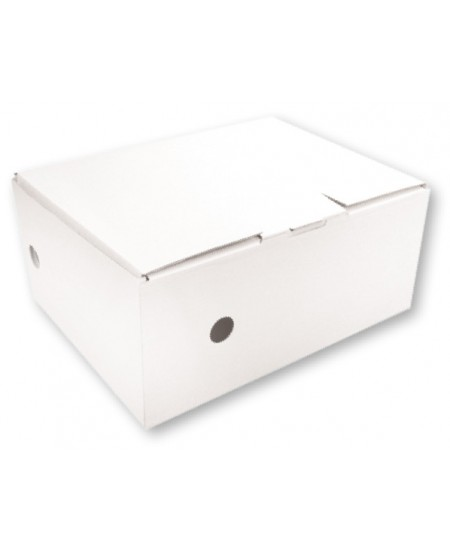 Archyvinė dėžė SM-LT, 150x335x250 mm, mikrogofro, balta