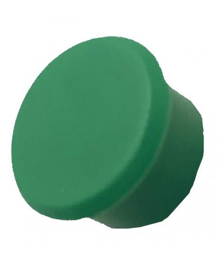 Magnetas ALCO, skersmuo 13mm, žalia spalva, 1vnt.