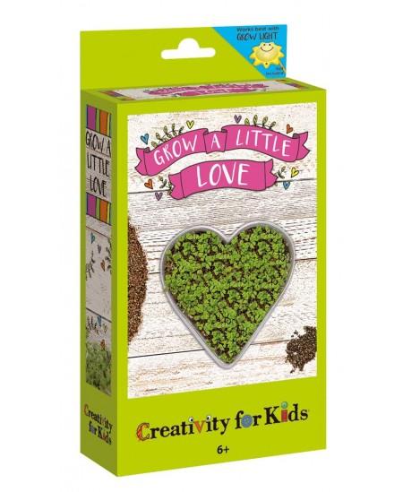 Kūrybinis rinkinys CREATIVITY FOR KIDS, užaugink sodą širdelėje