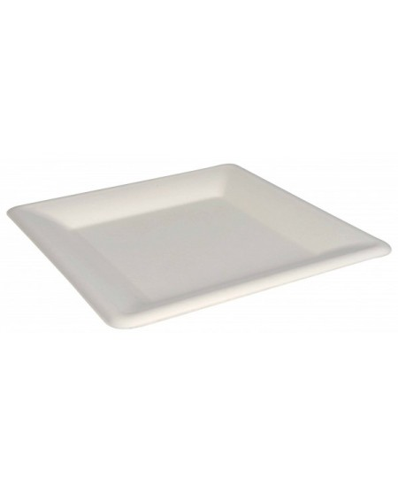 Ekologiškoskvadratinės lėkštės, iš cukranendrių, 26x26 cm, 50 vnt.