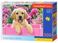 Dėlionė CASTORLAND Labrador Puppy in Pink Box, 300 det.