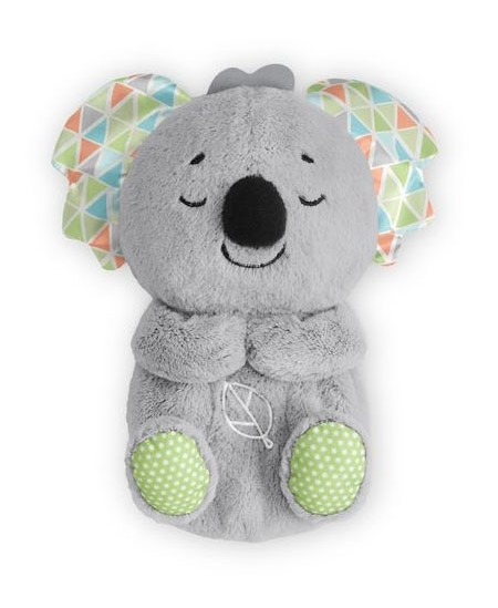 Migdukas Koala