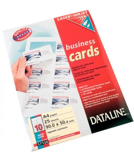Popierius vizitinėms kortelėms ESSELTE, 195 g/m2, 25 lapai