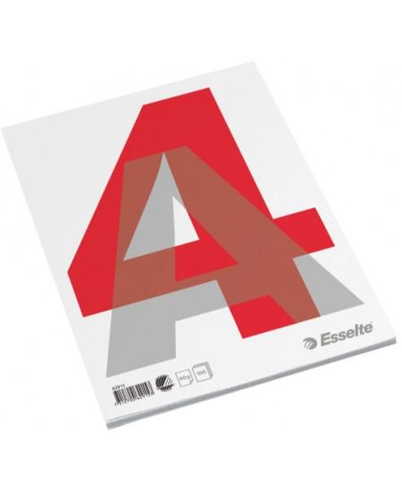 Plėšomi lapai rašymui ESSELTE, A4, su perforacija