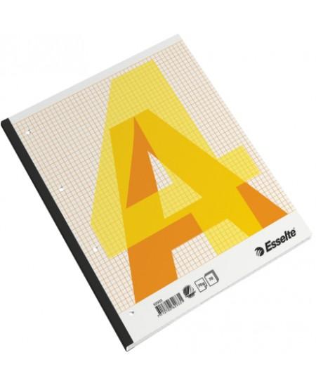 Kontorinis sąsiuvinis ESSELTE, A4, langeliais, raudonos sp. viršelis